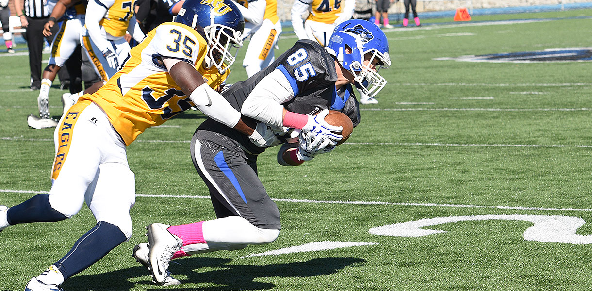 Photo for Six Blue Raiders collect Daktronics-NAIA Football Scholar-Athlete honors