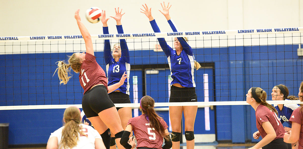 Photo for No. 5 Volleyball defeats Campbellsville 3-1