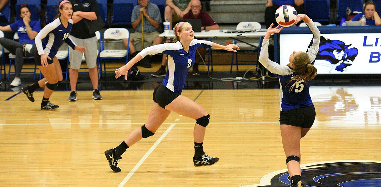 Photo for Volleyball travels to Campbellsville Thursday for MSC matchup
