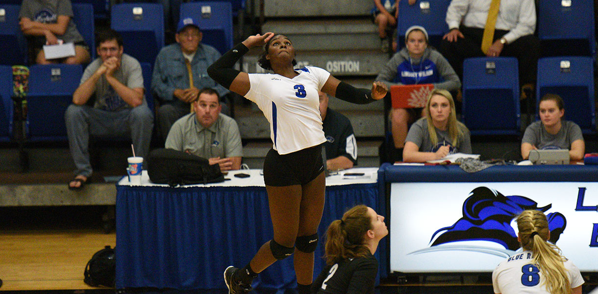 Photo for No. 2 Volleyball travels to Cumberlands Wednesday